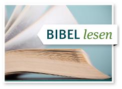 kommentar zur bibel at und nt